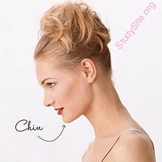 English to punjabi dictionary meaning of chin in punjabi is english to punjabi dictionary meaning of chin in punjabi is malvernweather Choice Image